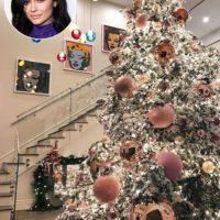 Decoratii de Craciun cu Kylie Jenner